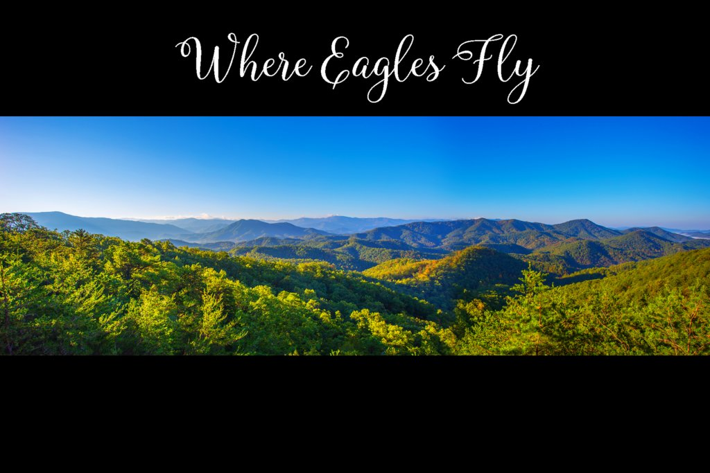 Photo of a Pigeon Forge Cabin named Where Eagles Fly - This is the first photo in the set.