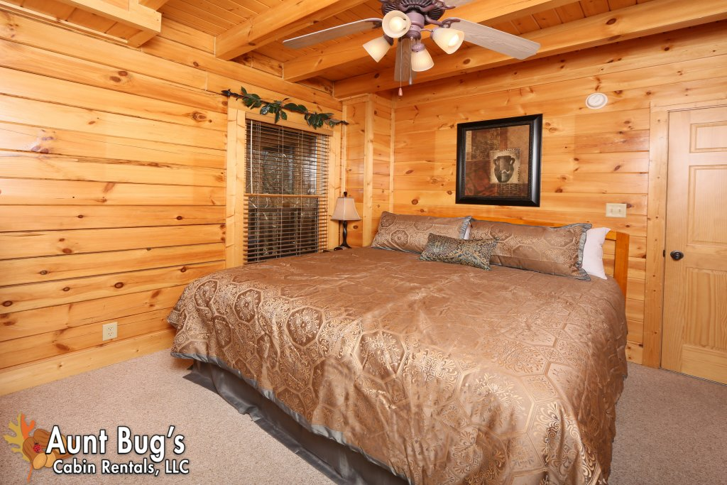 Photo of a Pigeon Forge Cabin named Big Daddy Bear #545 - This is the thirty-sixth photo in the set.