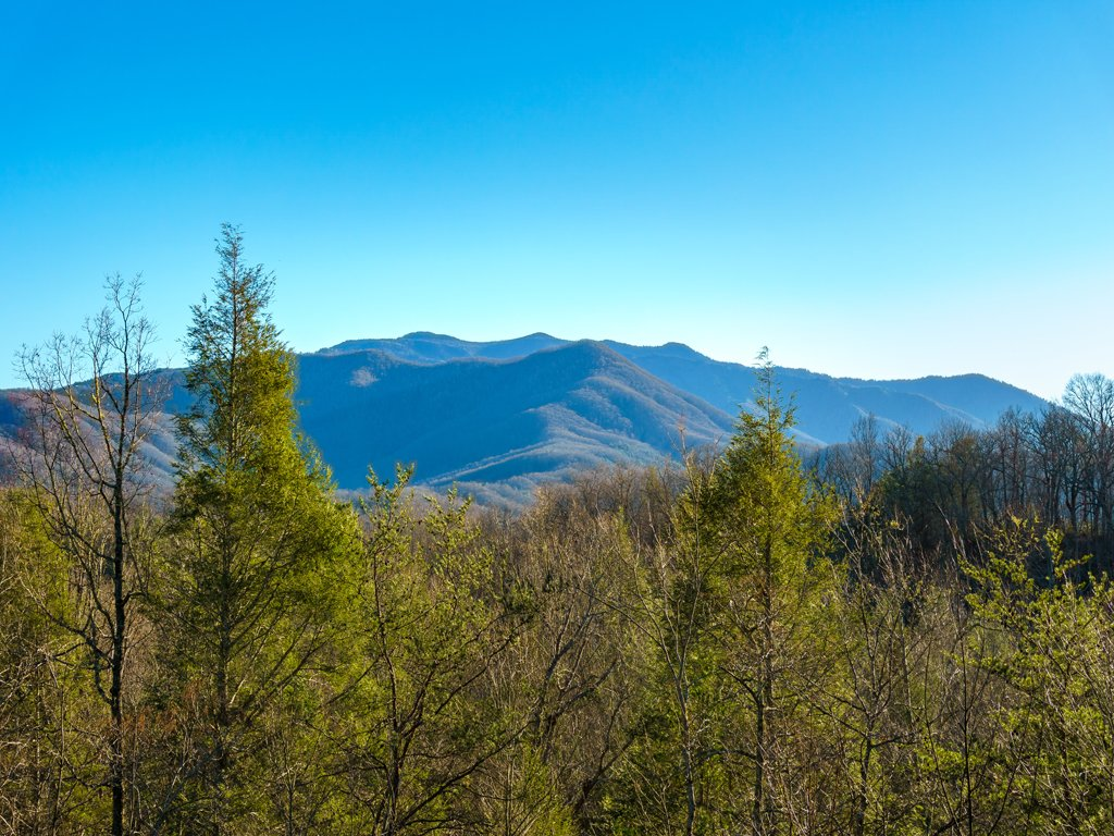 Photo of a Gatlinburg Cabin named Annie's Smoky View - This is the twenty-third photo in the set.