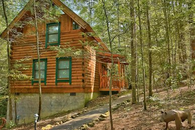Spacious, Private Pet-friendly Cabin perfect to enjoy the sound of a babbling creek