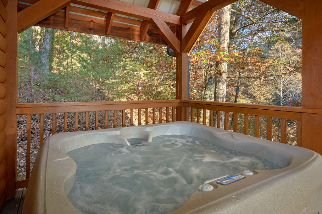 Photo of a Pigeon Forge Cabin named Wet Bear Paws #146 - This is the third photo in the set.