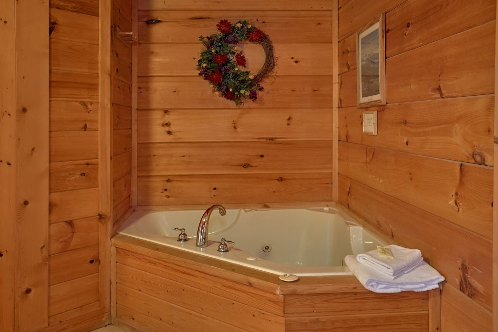 Photo of a Pigeon Forge Cabin named Wet Bear Paws #146 - This is the seventeenth photo in the set.