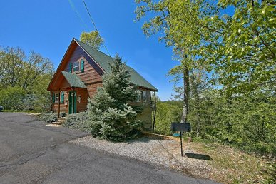 1 Bedroom Cabin Between Pigeon Forge and Gatlinburg with a Mountain View