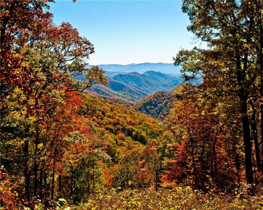 Photo of a Gatlinburg Cabin named Annie's Smoky View - This is the twenty-fourth photo in the set.