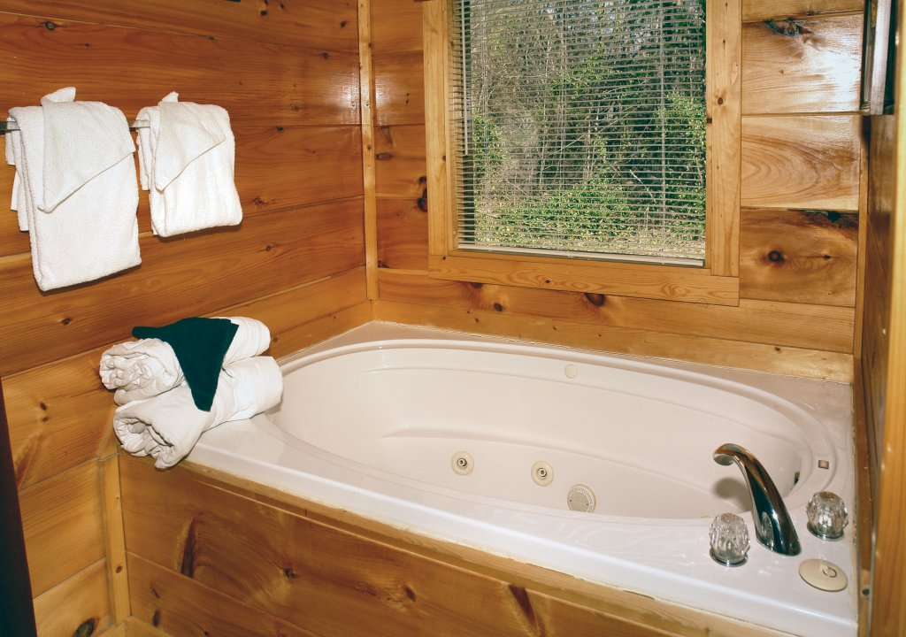 Photo of a Gatlinburg Cabin named Lover's Lake #105 - This is the sixth photo in the set.