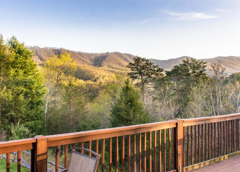 Photo of a Pigeon Forge Chalet named Birchwood Lodge - This is the twenty-second photo in the set.