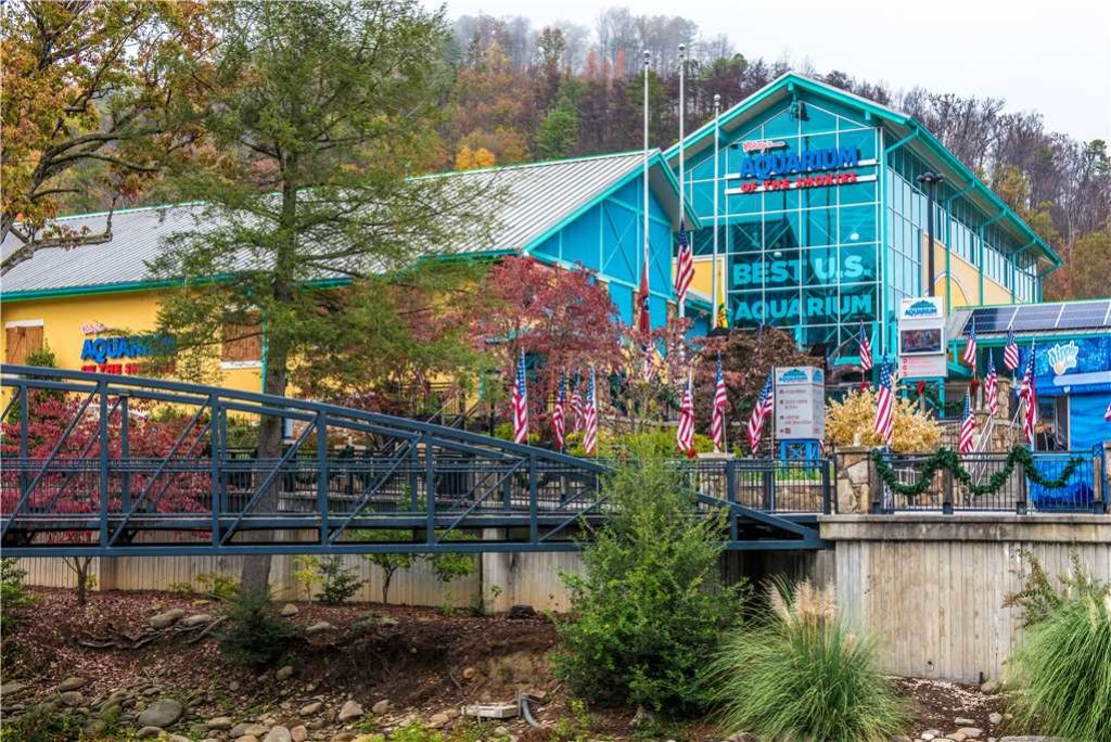 Photo of a Gatlinburg Cabin named Bearadise - This is the seventeenth photo in the set.