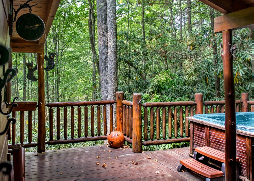 Photo of a Pigeon Forge Cabin named Bear Paw Trail #15 - This is the twentieth photo in the set.