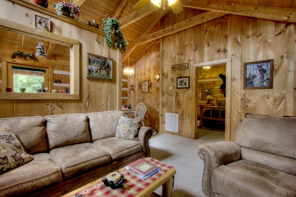 Photo of a Pigeon Forge Cabin named Apple Bear View #116 - This is the thirty-first photo in the set.