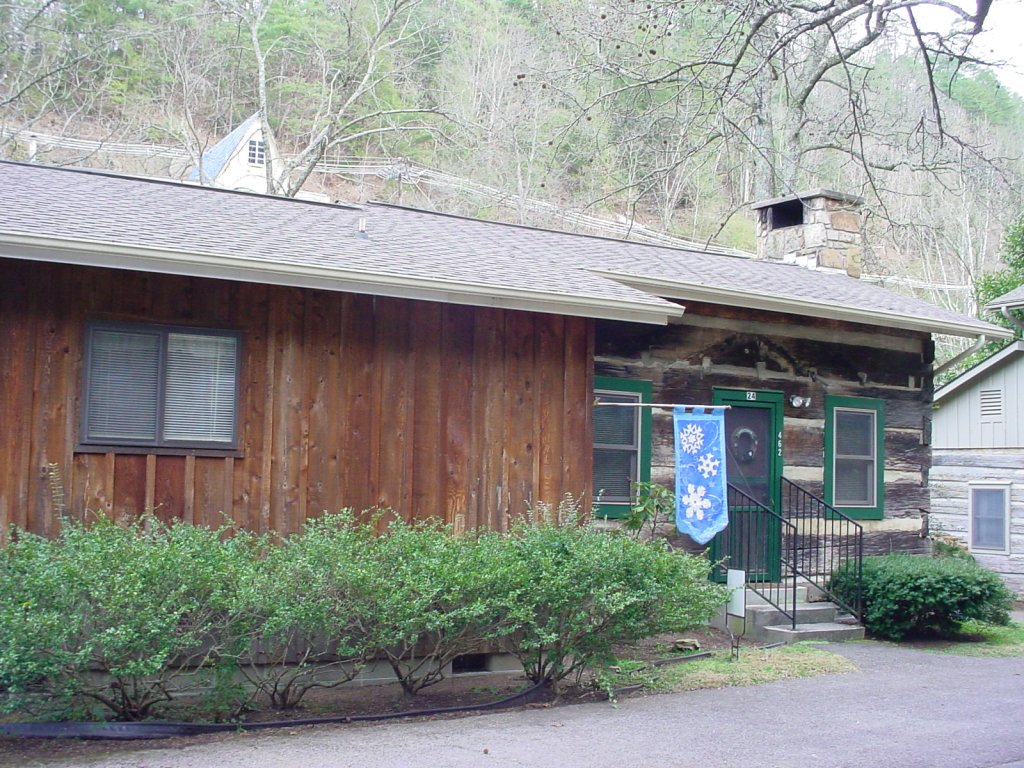 Photo of a Gatlinburg Cabin named Bear Cabin #462 - This is the second photo in the set.