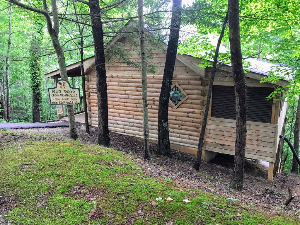 Photo of a Pigeon Forge Cabin named Cabin Fever - 117 - This is the twelfth photo in the set.