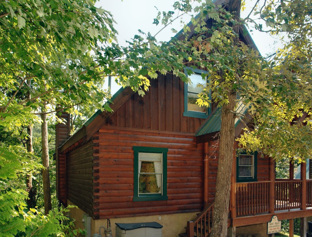 Photo of a Pigeon Forge Cabin named Buddy Bear #249 - This is the second photo in the set.