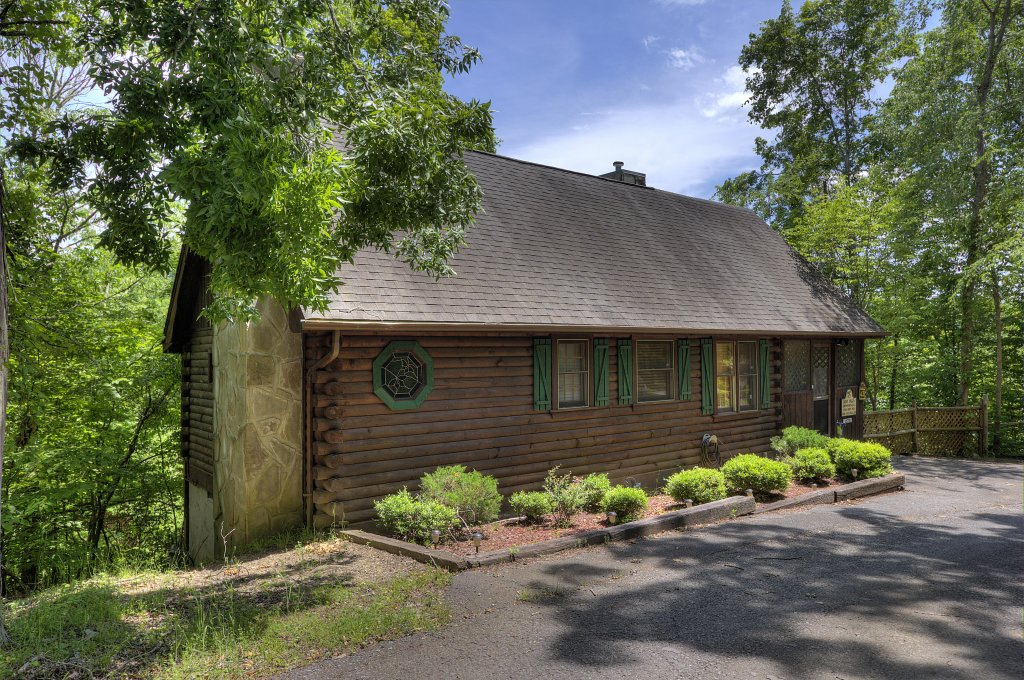 Photo of a Sevierville Cabin named Pure Pleasure Too #202 - This is the first photo in the set.