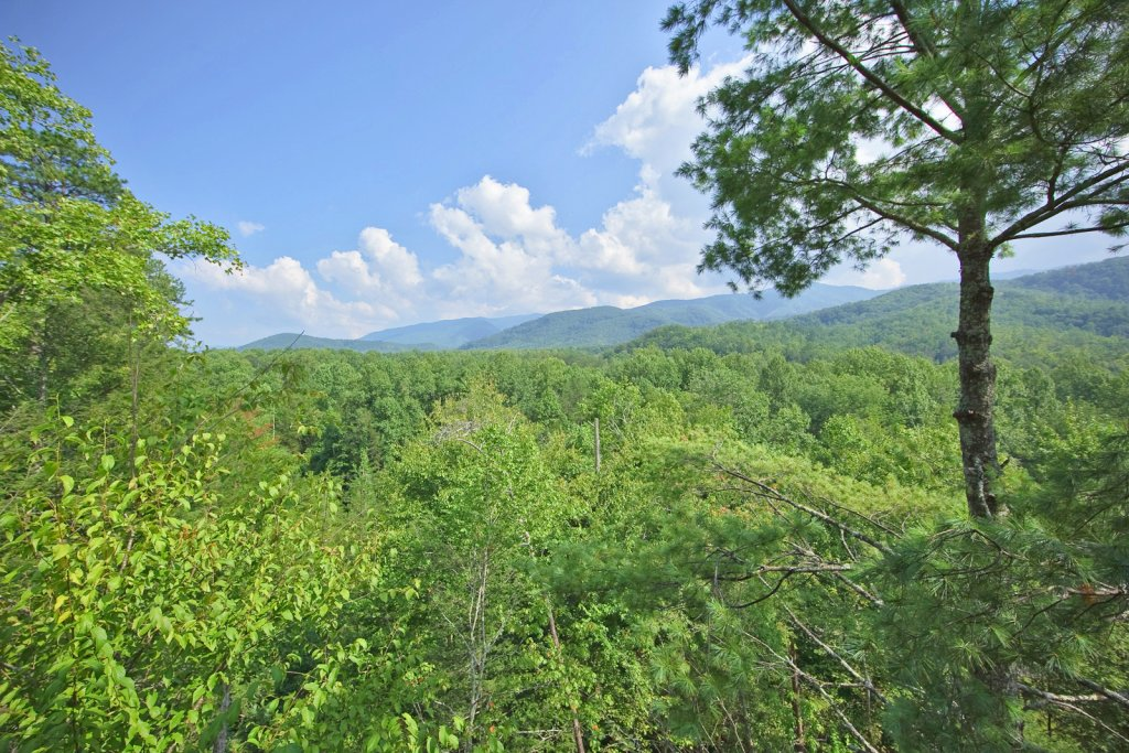 Photo of a Gatlinburg Cabin named Tree Tops - This is the seventh photo in the set.