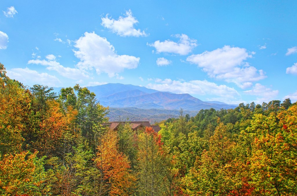 Photo of a Gatlinburg Cabin named Knotty Pine Delight - This is the first photo in the set.