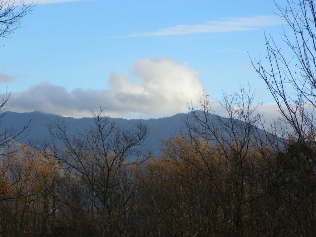 Photo of a Gatlinburg Cabin named Bearway To Heaven #1318 - This is the sixth photo in the set.