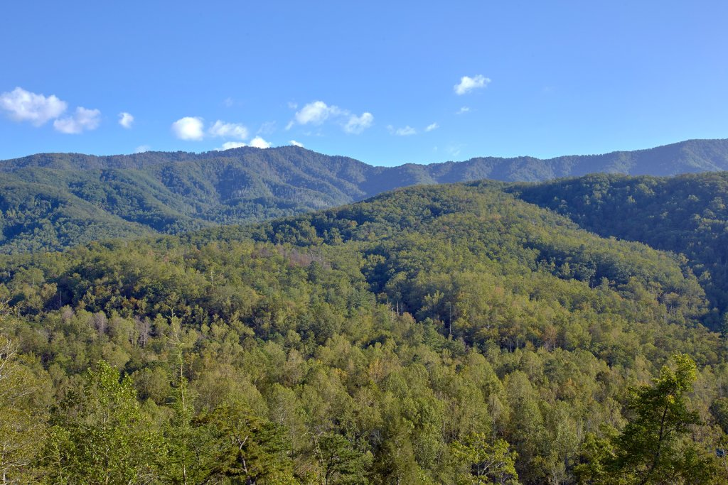 Photo of a Gatlinburg Cabin named Forever Young - This is the forty-fourth photo in the set.