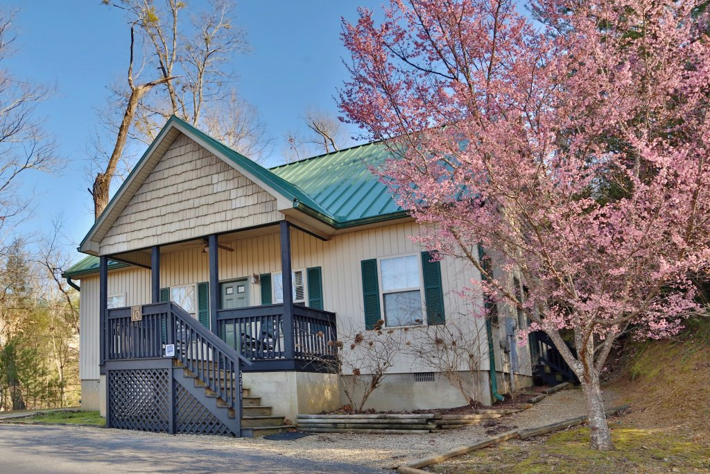 Photo of a Pigeon Forge Cabin named Apple Blossom (#10) - This is the first photo in the set.