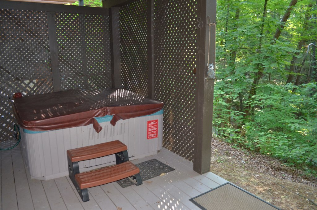 Photo of a Pigeon Forge Cabin named Firefly Hollow #165 - This is the nineteenth photo in the set.
