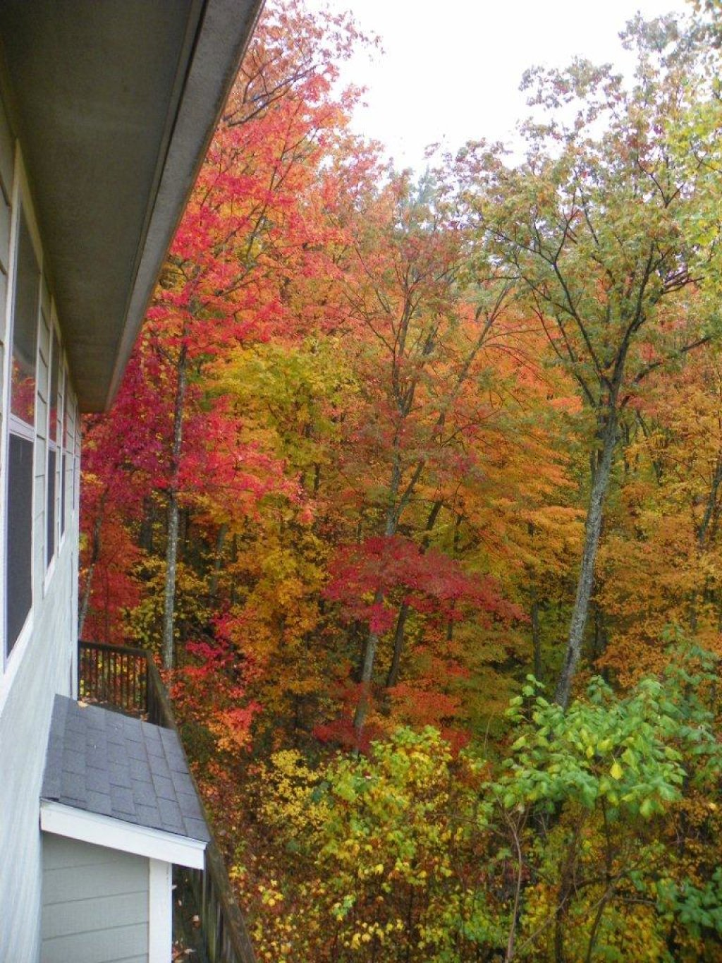 Photo of a Gatlinburg Cabin named Bearway To Heaven #1318 - This is the fifth photo in the set.
