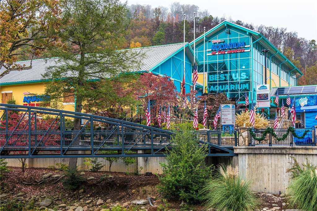 Photo of a Gatlinburg Cabin named Lone Wolf Lodge - This is the third photo in the set.