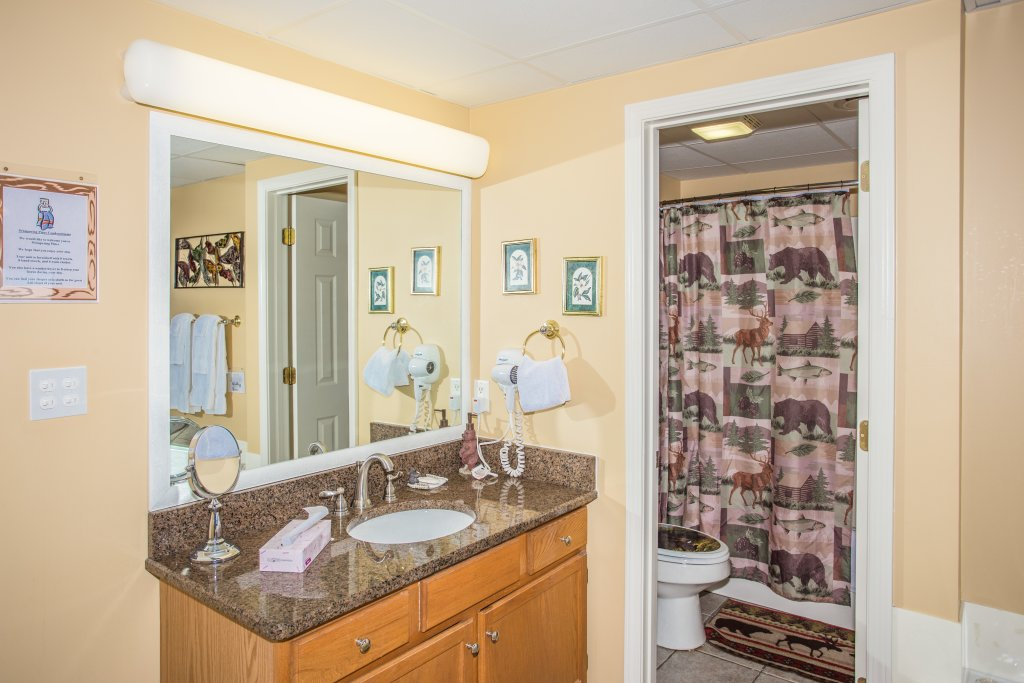 Photo of a Pigeon Forge Condo named Whispering Pines 242 - This is the twentieth photo in the set.