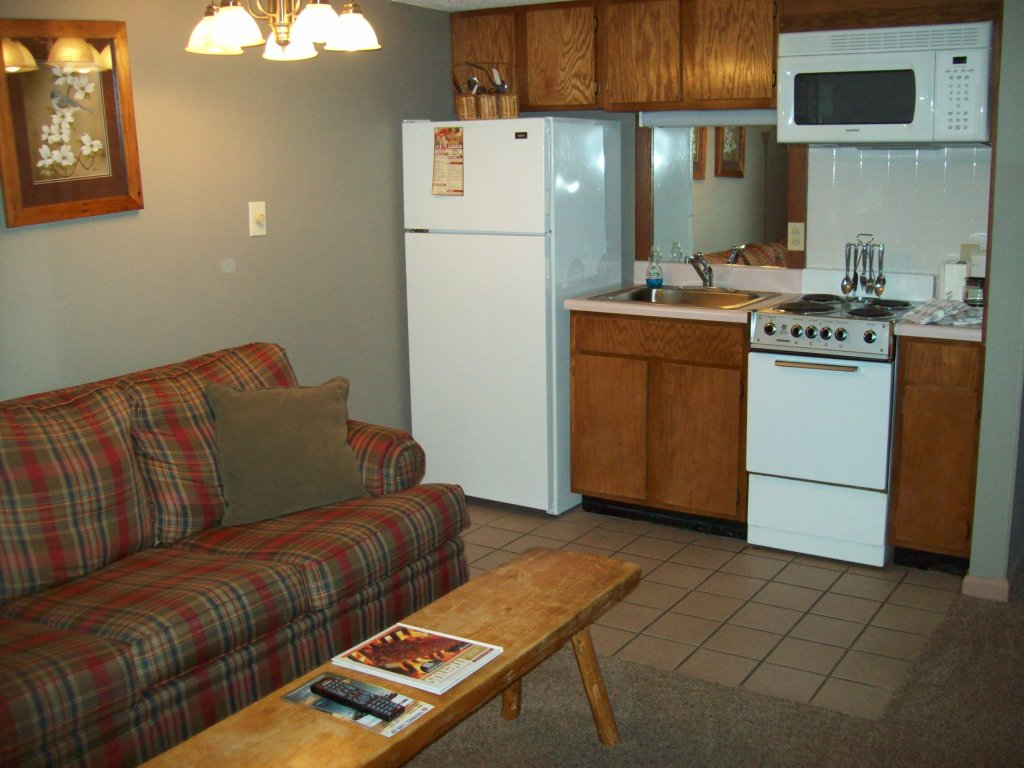 Photo of a Gatlinburg Condo named 201 - This is the third photo in the set.