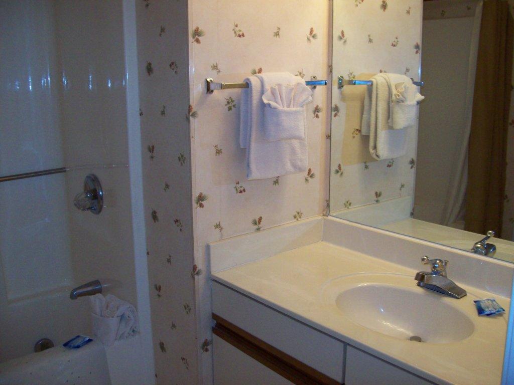 Photo of a Gatlinburg Condo named 5b - This is the sixth photo in the set.