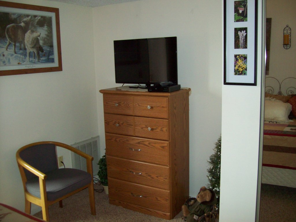 Photo of a Gatlinburg Condo named 205 - This is the third photo in the set.