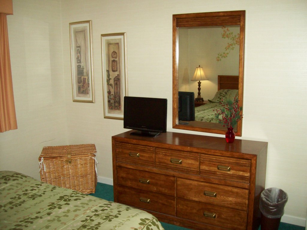 Photo of a Gatlinburg Condo named 305 - This is the third photo in the set.