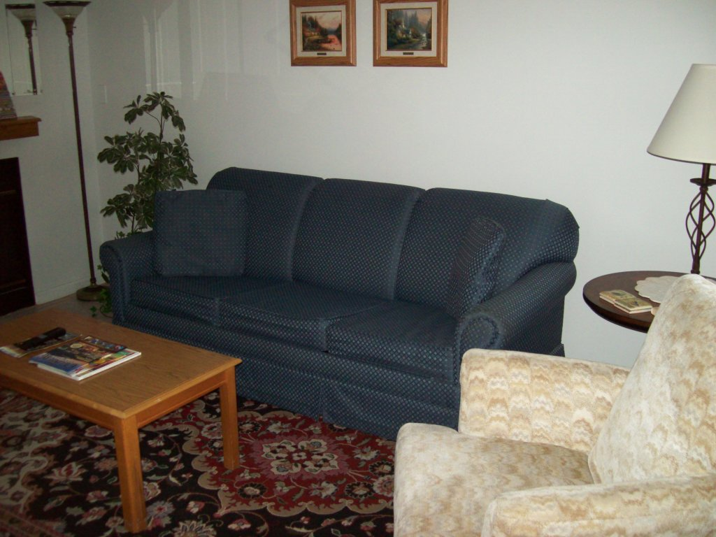 Photo of a Gatlinburg Condo named 206 - This is the second photo in the set.