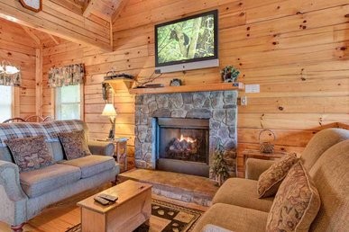 Three Bears Cabin, 1 Bedroom, Mtn Views, Hot Tub, Pool Table, Sleeps 6