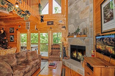 Bear Country Cabin,  2 Bedrooms, Private, Foosball, Hot Tub,  Sleeps 6