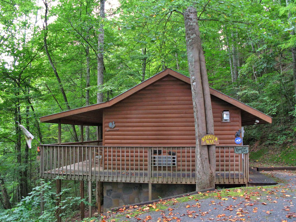 Rooster Way Cabin In Sevierville W 1 Br Sleeps2