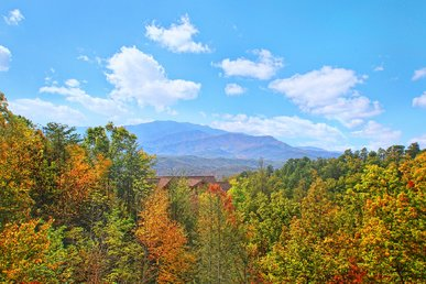 Breathtaking Views From Atop Pinnacle Vista In This 3 Br Cabin W/theater Room