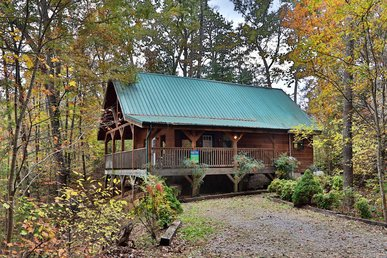 Pet Friendly, Secluded Cabin 7 Miles To Pigeon Forge & Gatlinburg