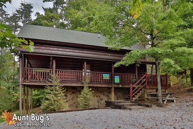 2 Bedroom Smoky Mountain Cabin with Easy Access and Mountain View.