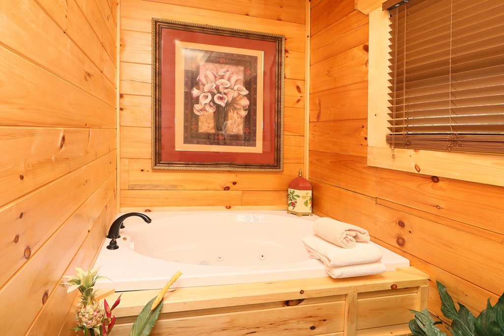 Photo of a Pigeon Forge Cabin named Picture Perfect - This is the twenty-ninth photo in the set.