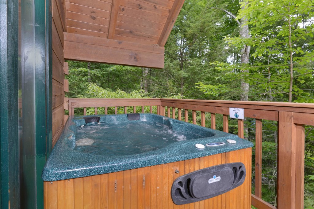 Photo of a Gatlinburg Cabin named Foxy Lady #1531 - This is the second photo in the set.