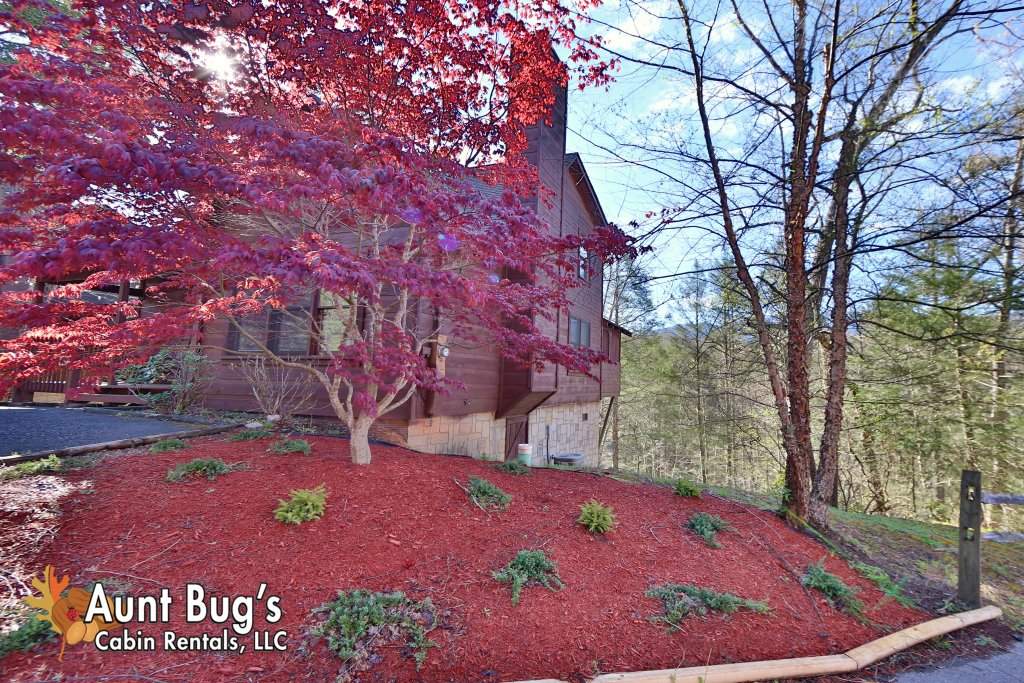 Photo of a Gatlinburg Cabin named Morning Mist #246 - This is the twenty-third photo in the set.