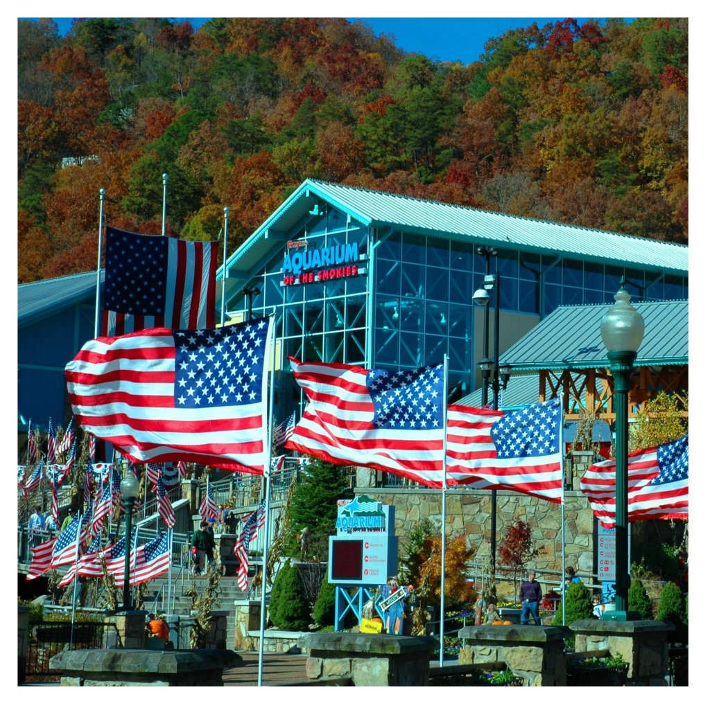 Photo of a Gatlinburg Cabin named American Dream #142 - This is the twenty-second photo in the set.