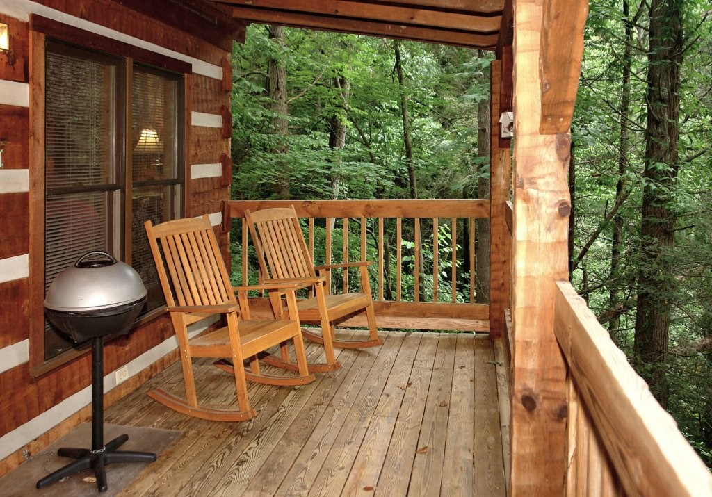 Photo of a Gatlinburg Cabin named Puppy Love #1619 - This is the fifth photo in the set.