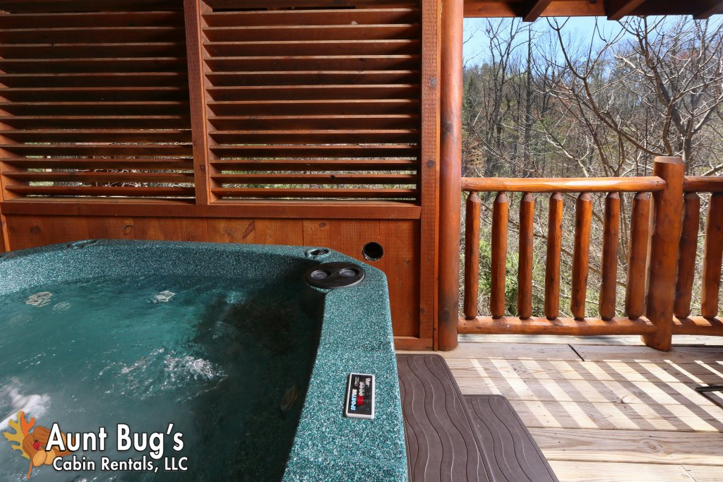 Photo of a Pigeon Forge Cabin named Big Daddy Bear #545 - This is the thirty-second photo in the set.