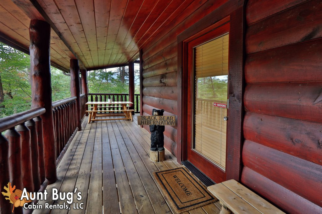 Photo of a Pigeon Forge Cabin named Black Bear Hibernation #2825 - This is the seventh photo in the set.
