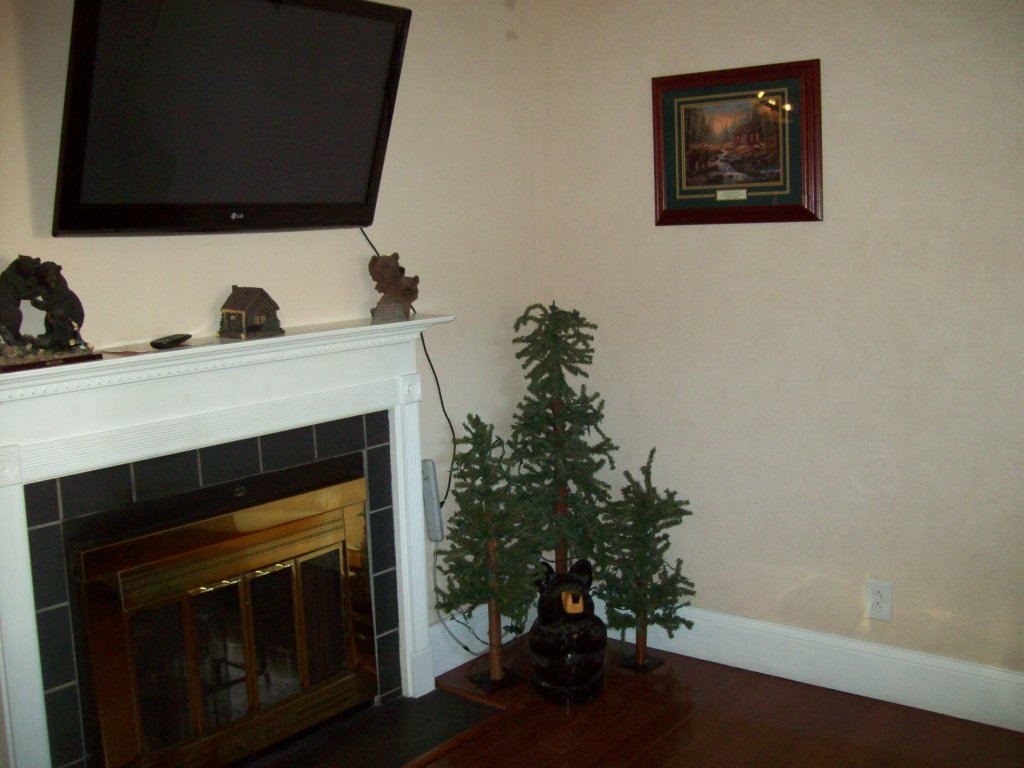Photo of a Gatlinburg Condo named 313 - This is the first photo in the set.