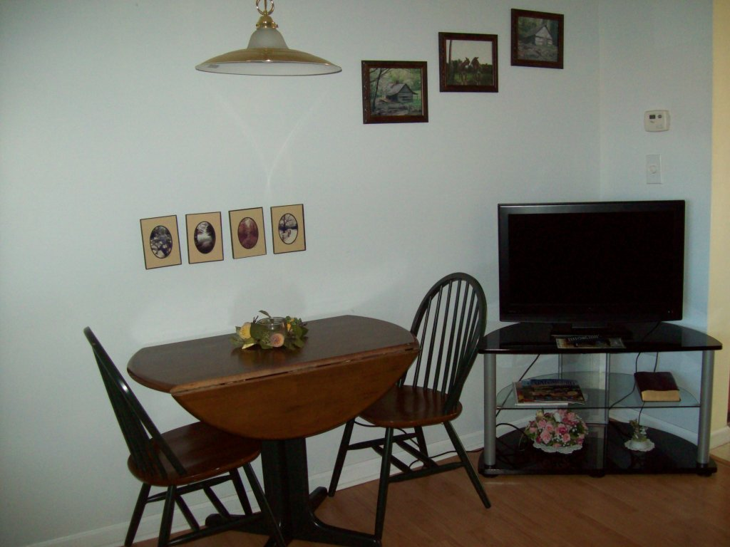 Photo of a Gatlinburg Condo named 306 - This is the third photo in the set.