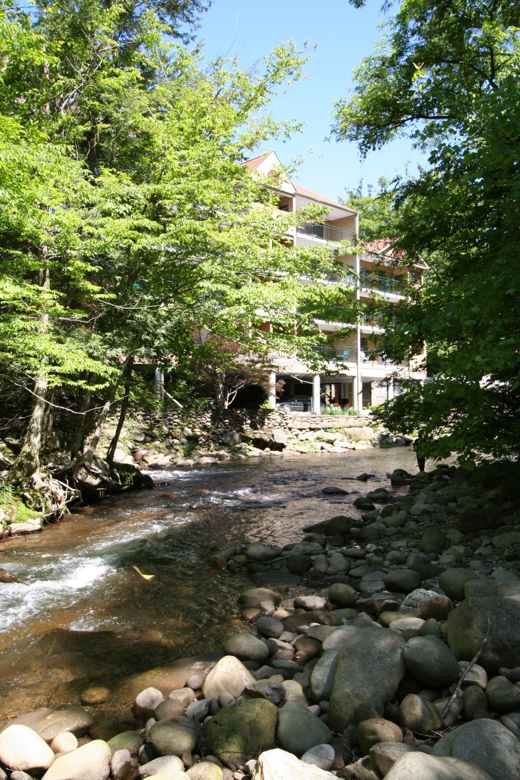 Photo of a Gatlinburg Condo named Level Four, Great River View - 403 - This is the fifteenth photo in the set.