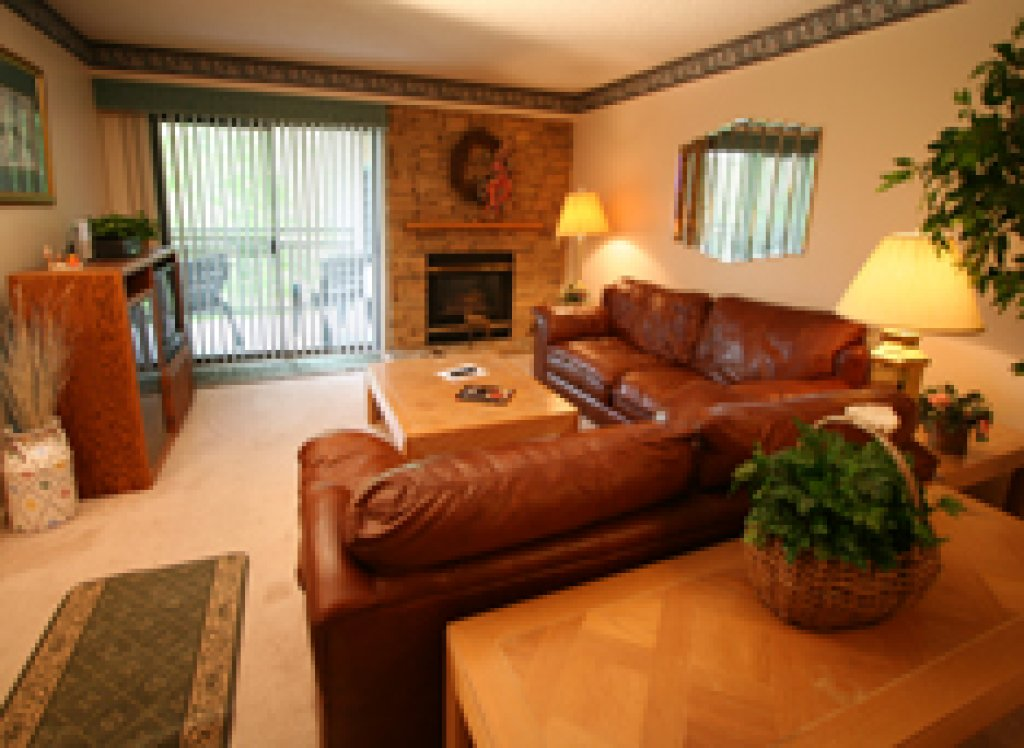 Photo of a Gatlinburg Condo named Level One, Great River View - 108 - This is the second photo in the set.