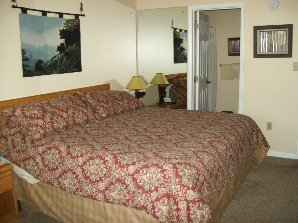 Photo of a Gatlinburg Condo named 203 - This is the fifth photo in the set.