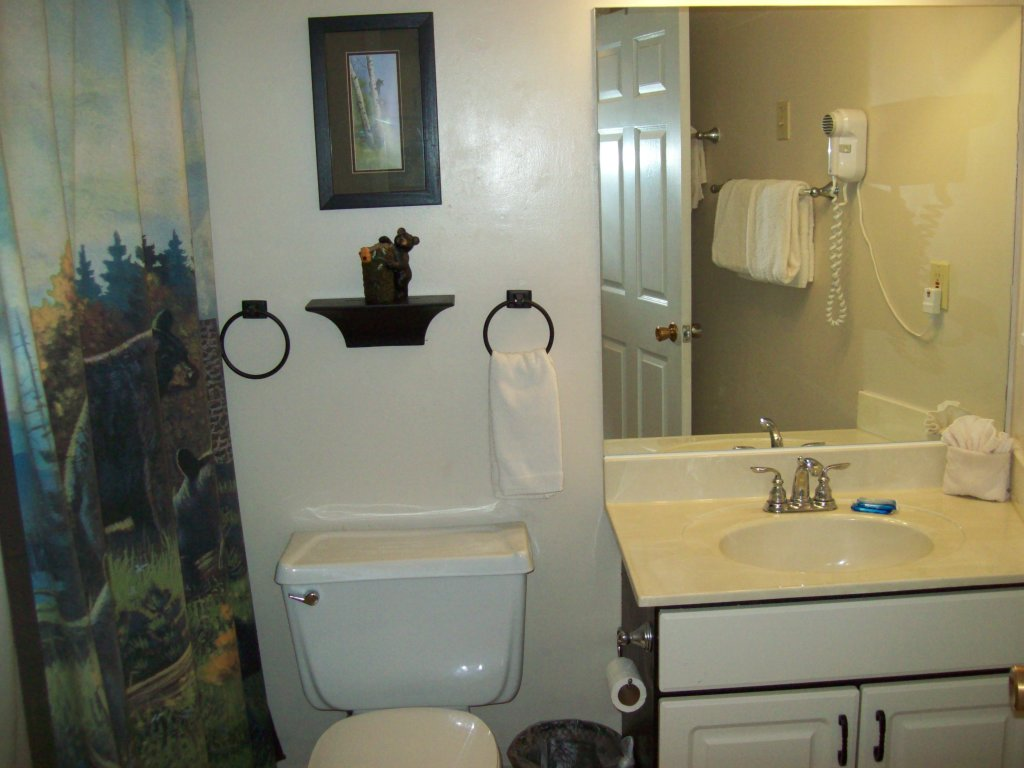Photo of a Gatlinburg Condo named 709 - This is the third photo in the set.